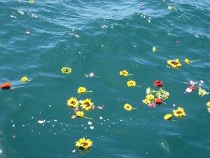 flowers on the sea